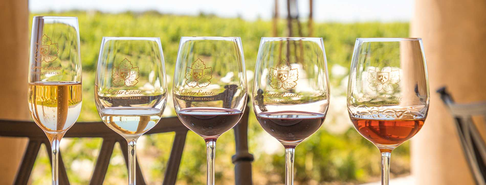 Carter Wine Tasting