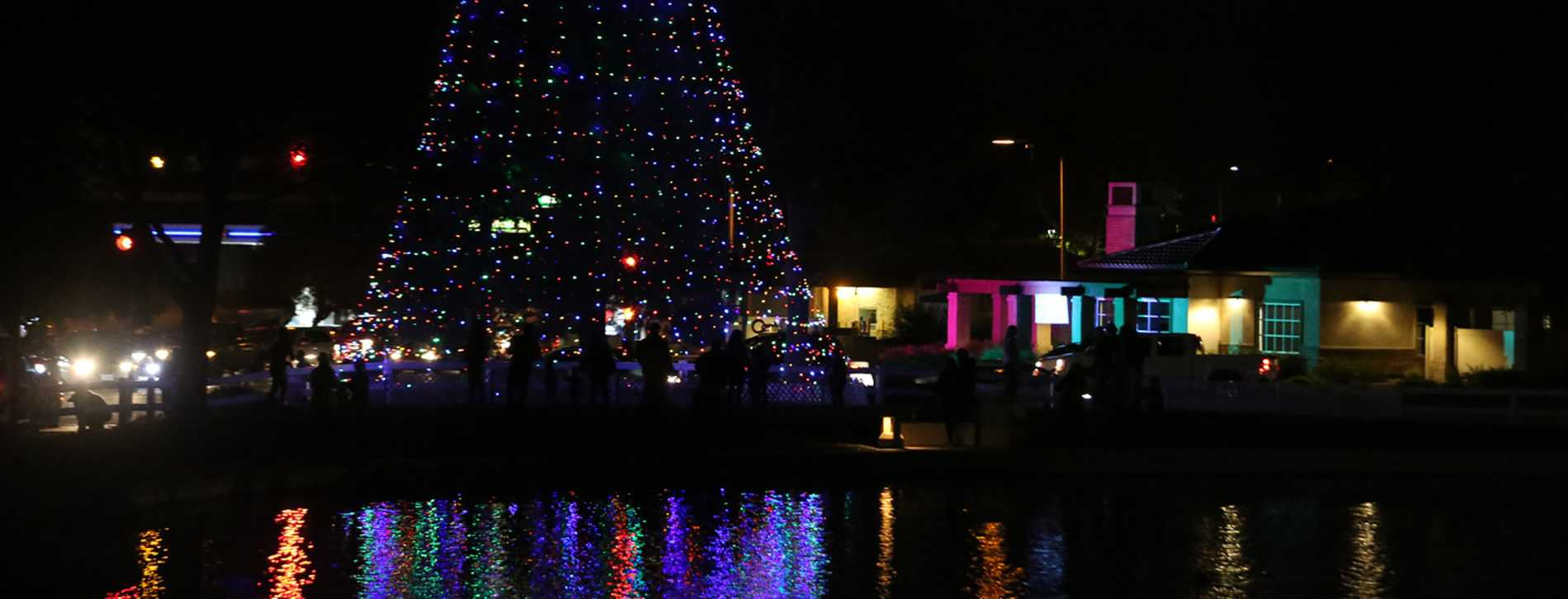 Purple Christmas Tree Lights.Christmas Tree Lighting At The Pond