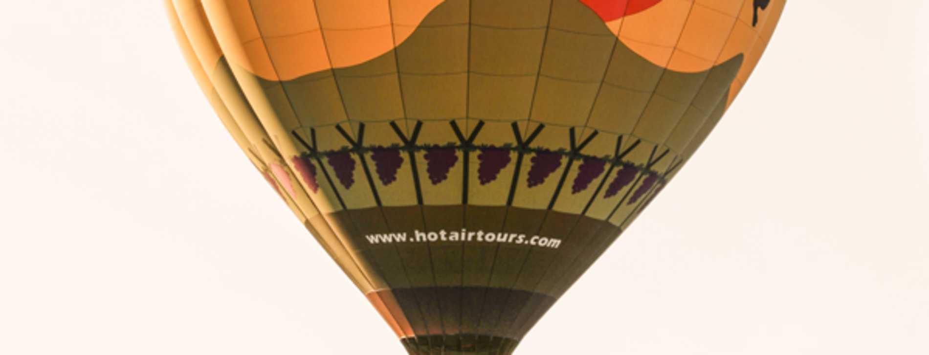 A Grape Escape Hot Air Balloon