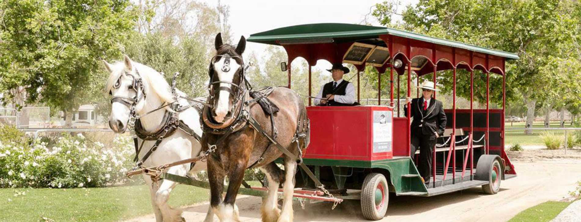 Temecula Carriage Co.