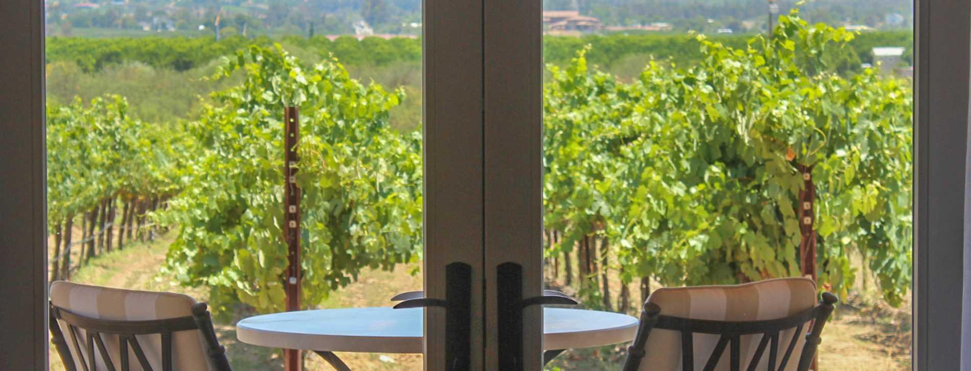 Carter Estate Vineyard View - Temecula
