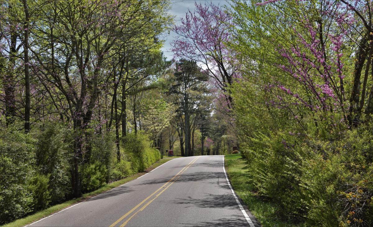 Rural road outside Huntsville