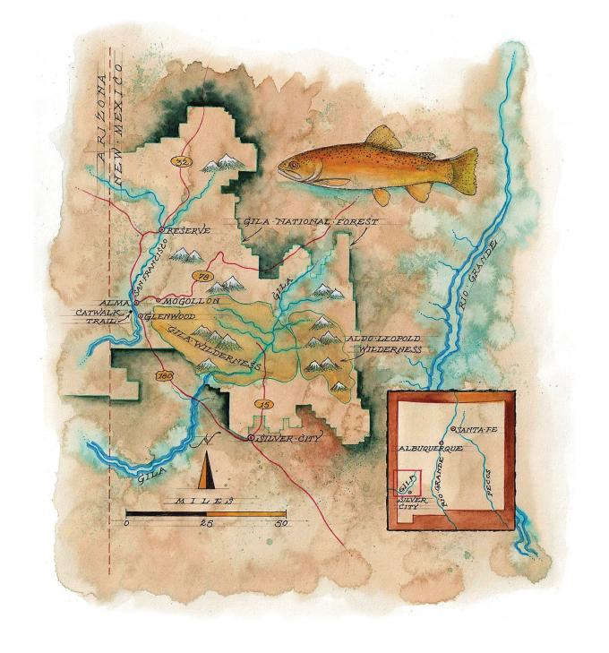 Gila Trout Map