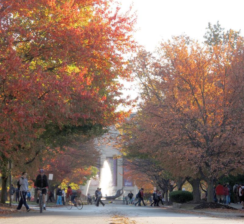 Showalter Fountain in Fall