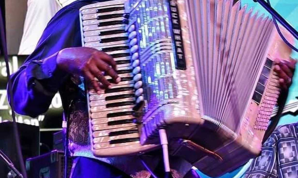 Buckwheat Zydeco Jr. and ils Sont Partis Band