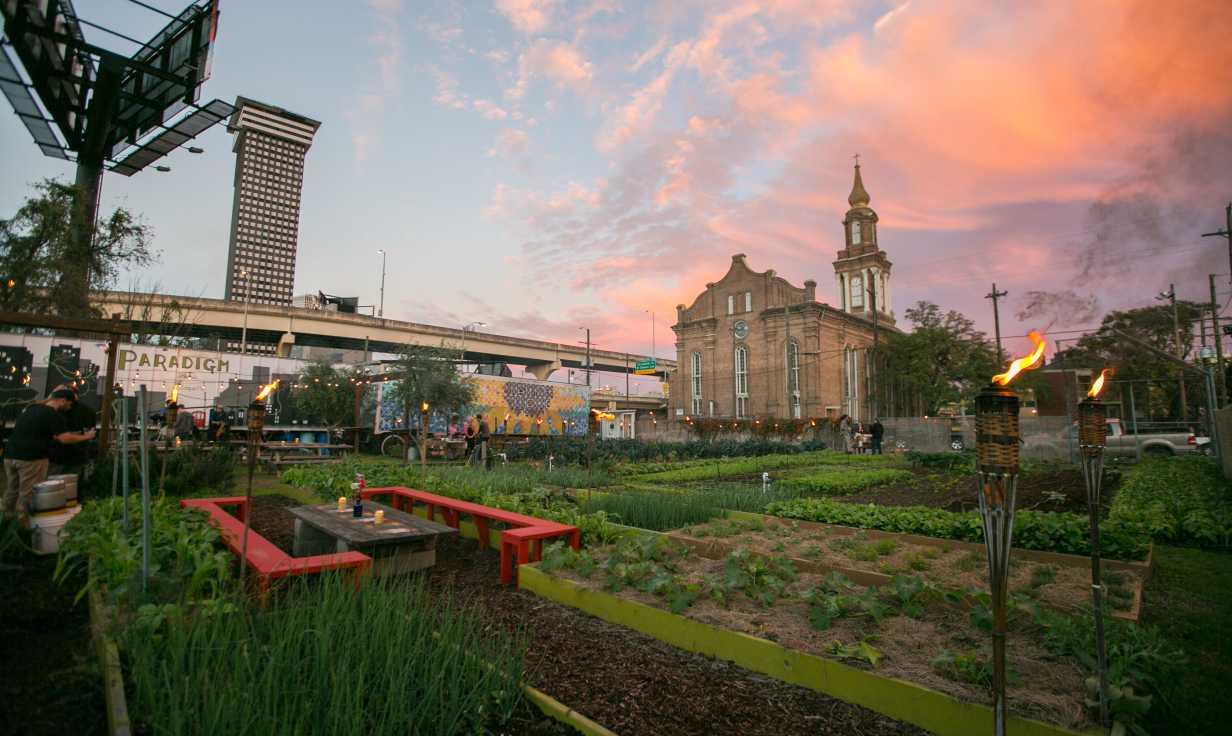 Paradigm Gardens- Outdoor Concert Series- Central City