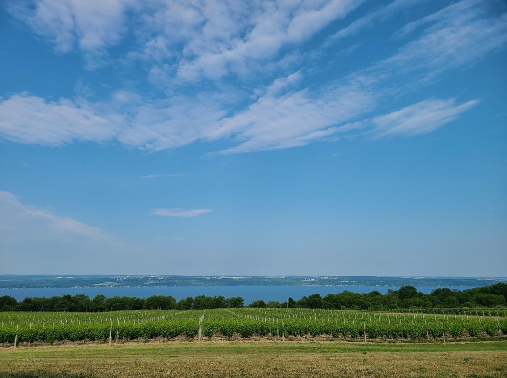 View of Seneca Lake from Boundary Breaks