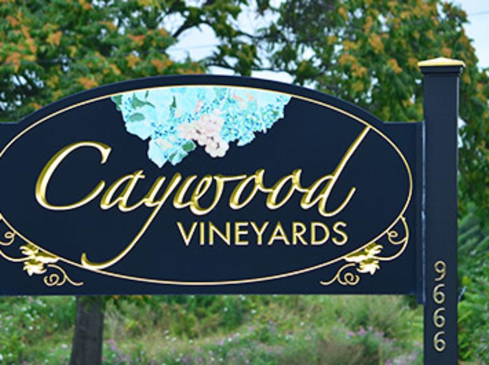 CAYWOOD VINEYARD