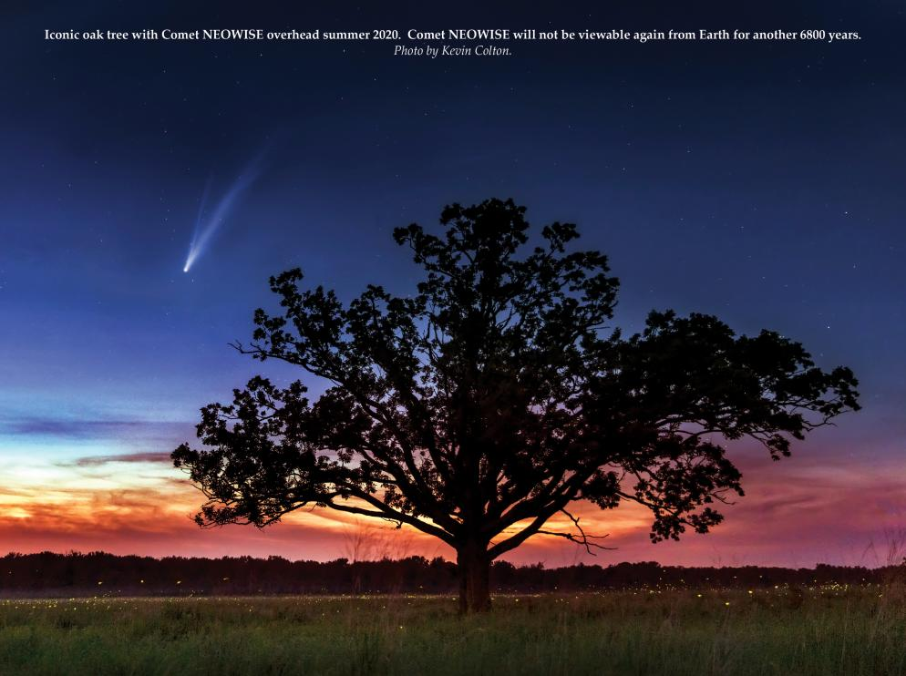 Iconic Oak with Comet Neowise and fire flies