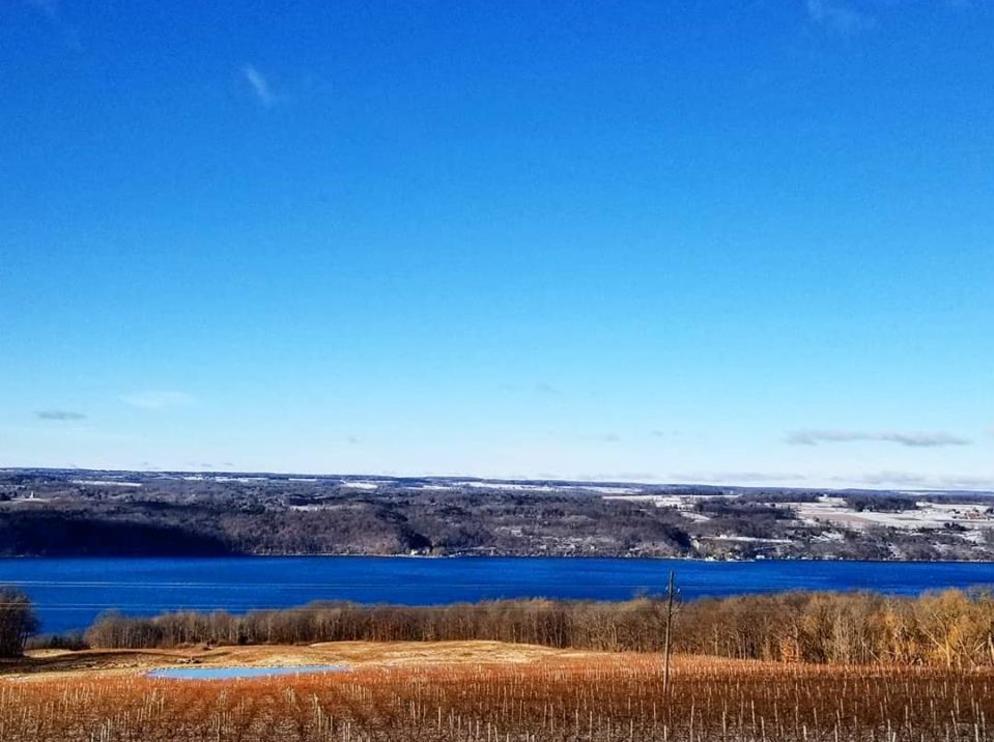 Winter overlooking Seneca Lake
