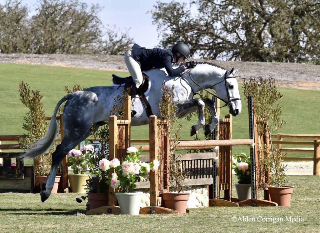 horsepark-1024x744