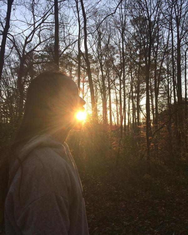 Big Trees Forest Preserve Instagram