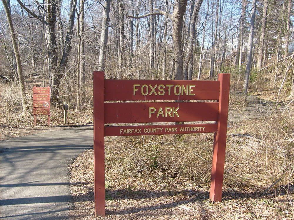 Foxstone Park Bridge