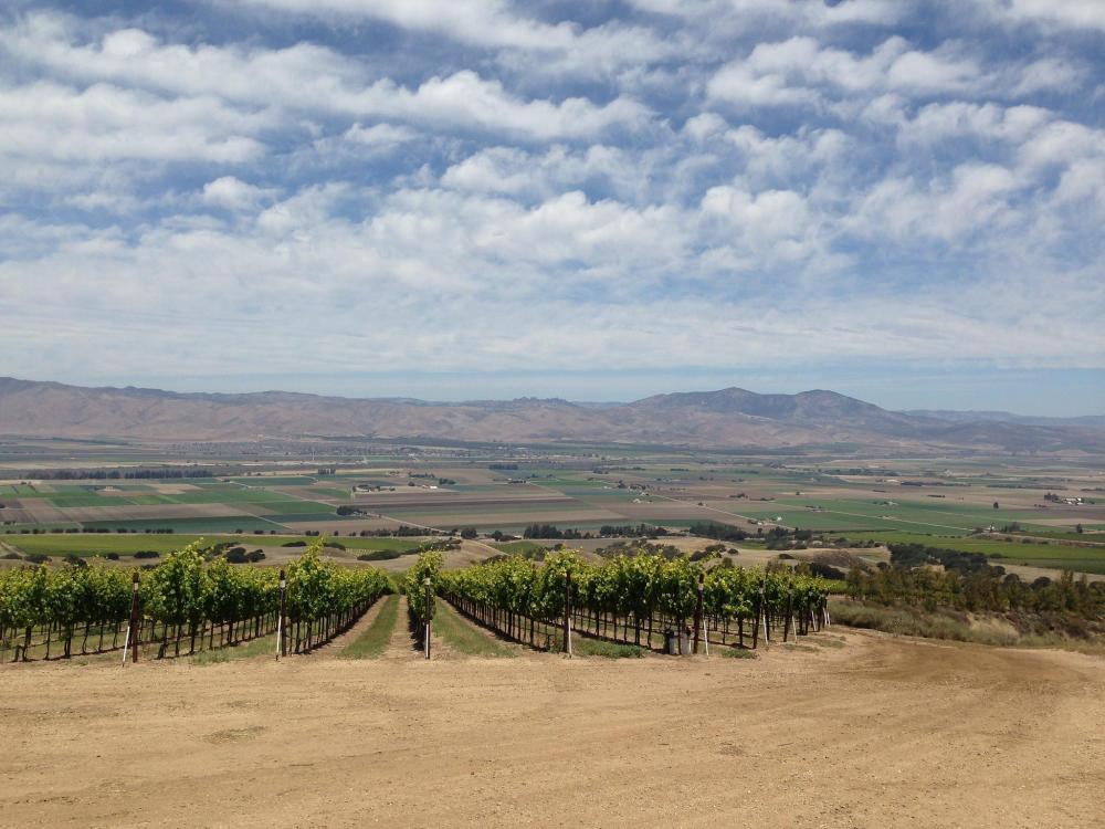 Hahn Winery Salinas Valley