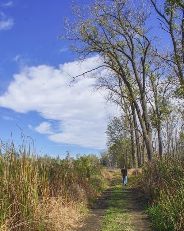 @sethsparacosm Fort Wayne Trail Fall Photo