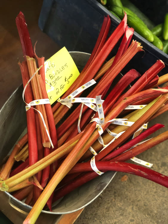 Farmers Markets - Fairbanks Alaska - Rhubarb