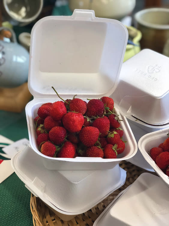Farmers Markets - Fairbanks Alaska - stawberries