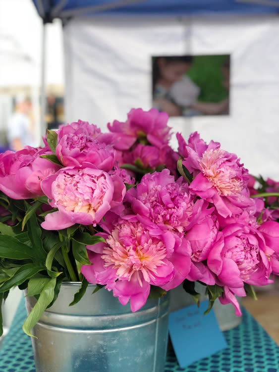 Farmers Markets - Fairbanks Alaska - peonies
