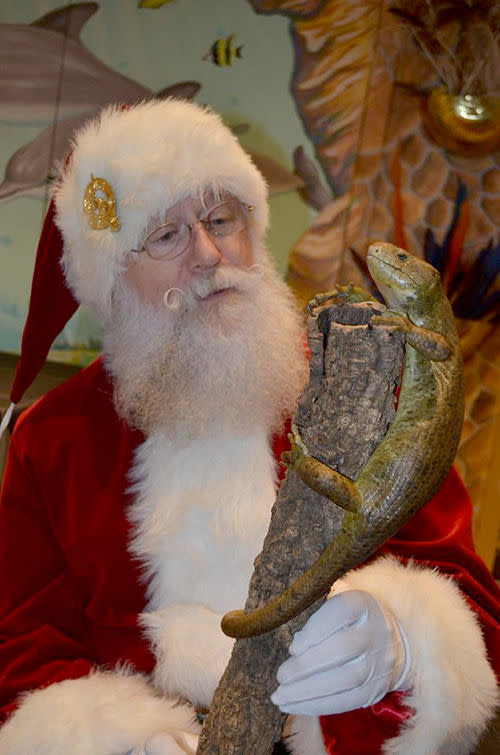 Santa is headed to Greater Wilmington and is making multiple stops at the Brandywine Zoo