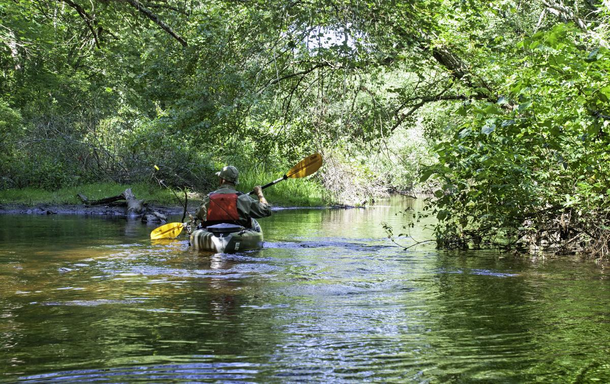 Frying Pan Pond Arcadia Kayaking