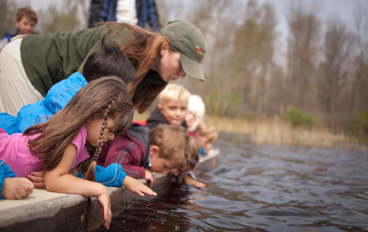 Children looking into the water at the Chippewa Nature Center Nature Preschool