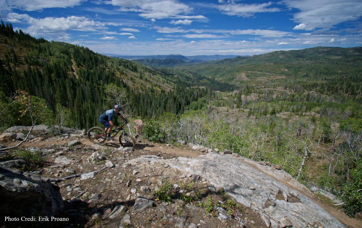 The new grouse trail on buffalo pass is for experts only