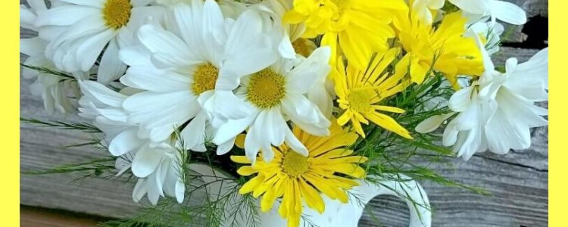 Pretty Bouquet of Daisies