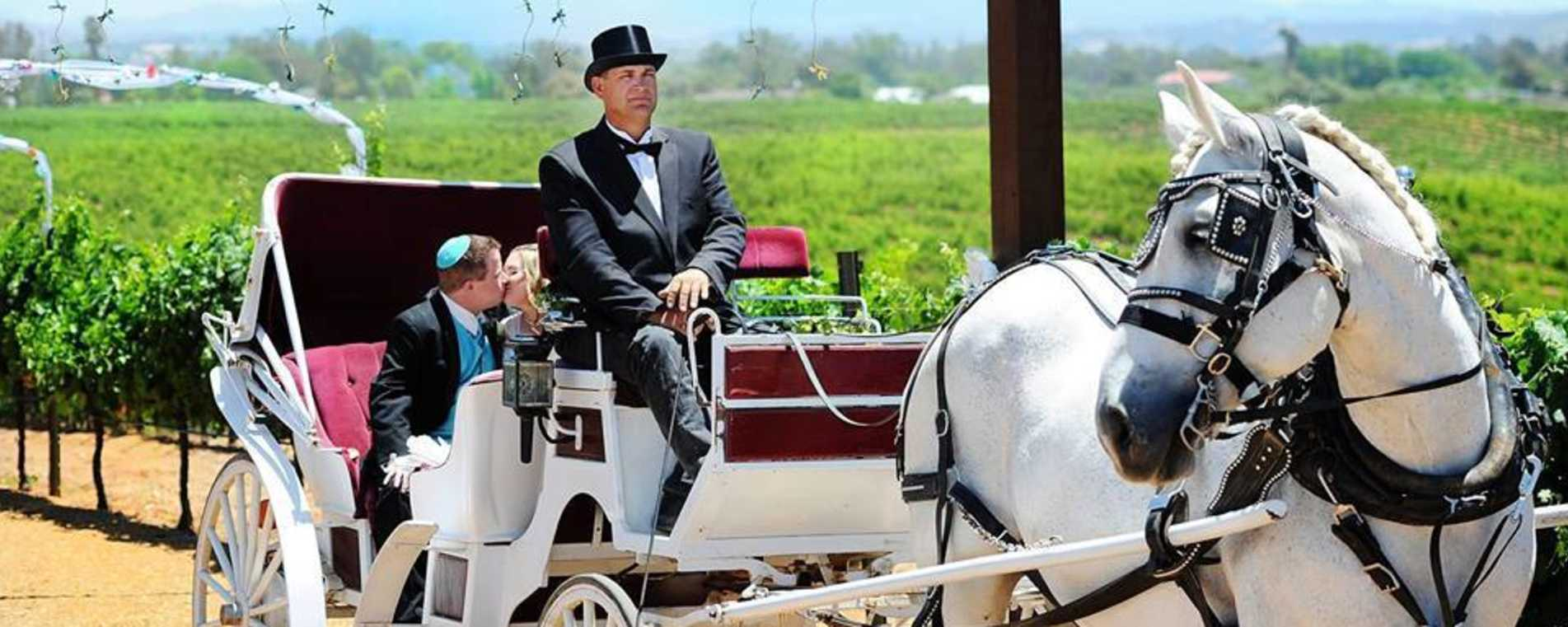 Carriage Ride - Temecula Carriage Co.