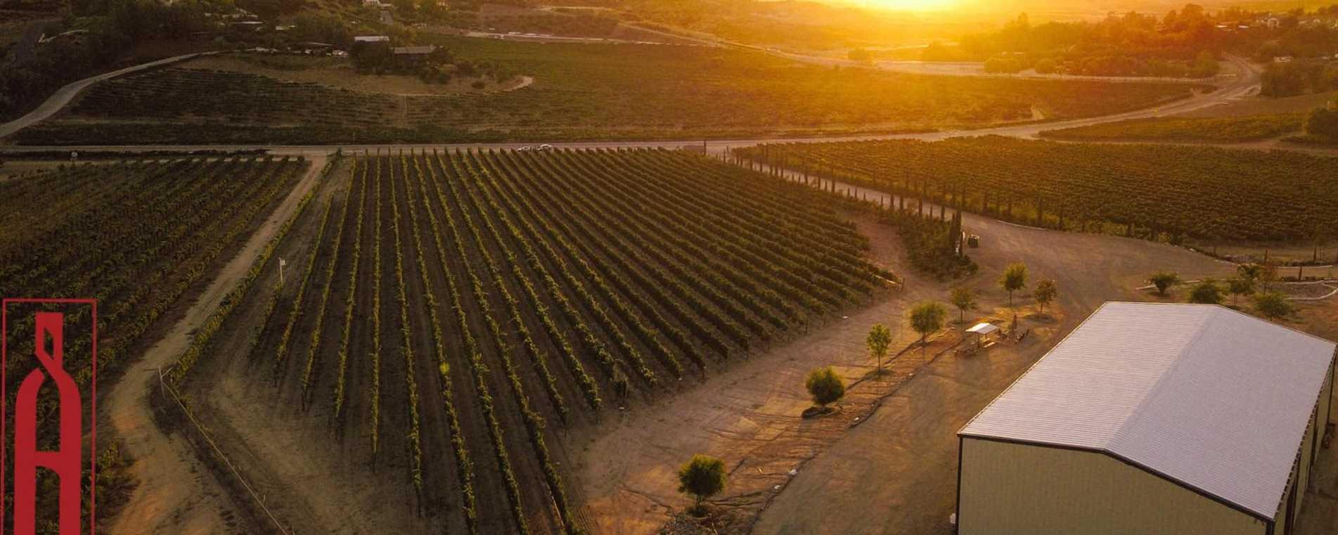 Akash Winery Header 01