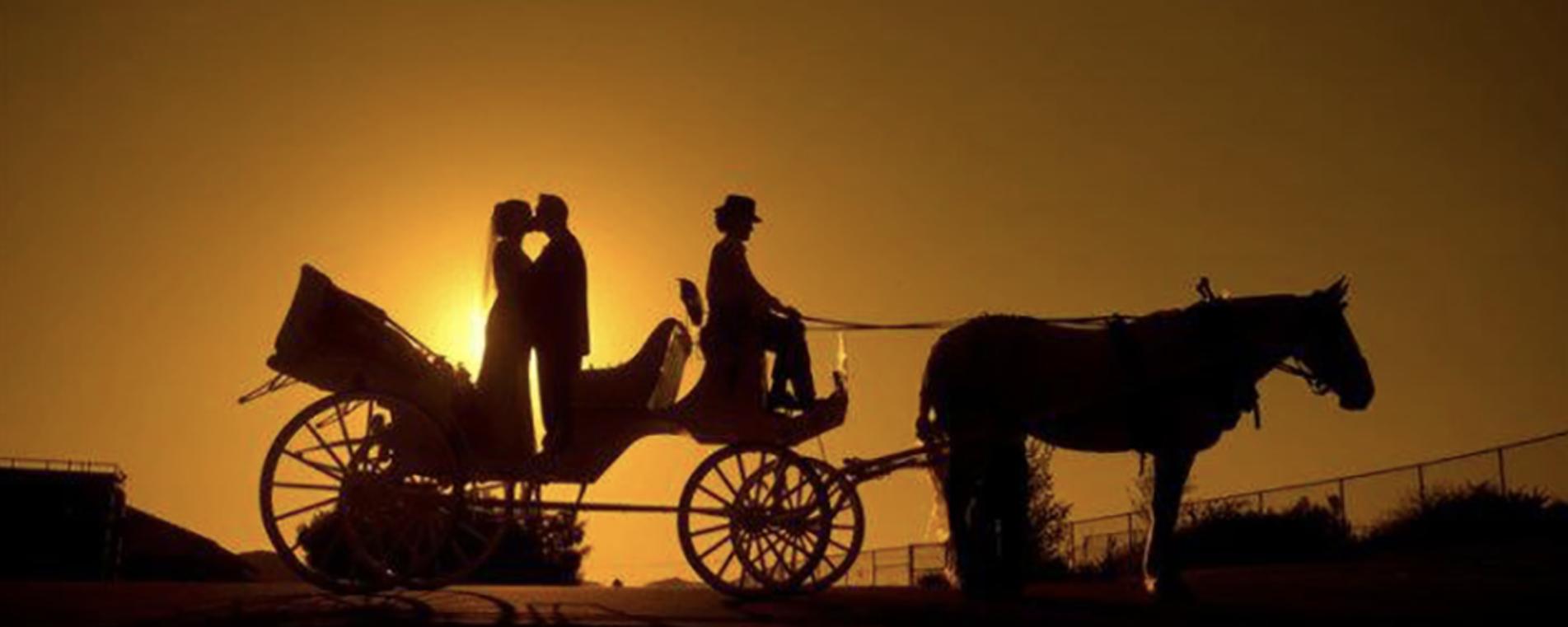 Valentine's Carriage Ride