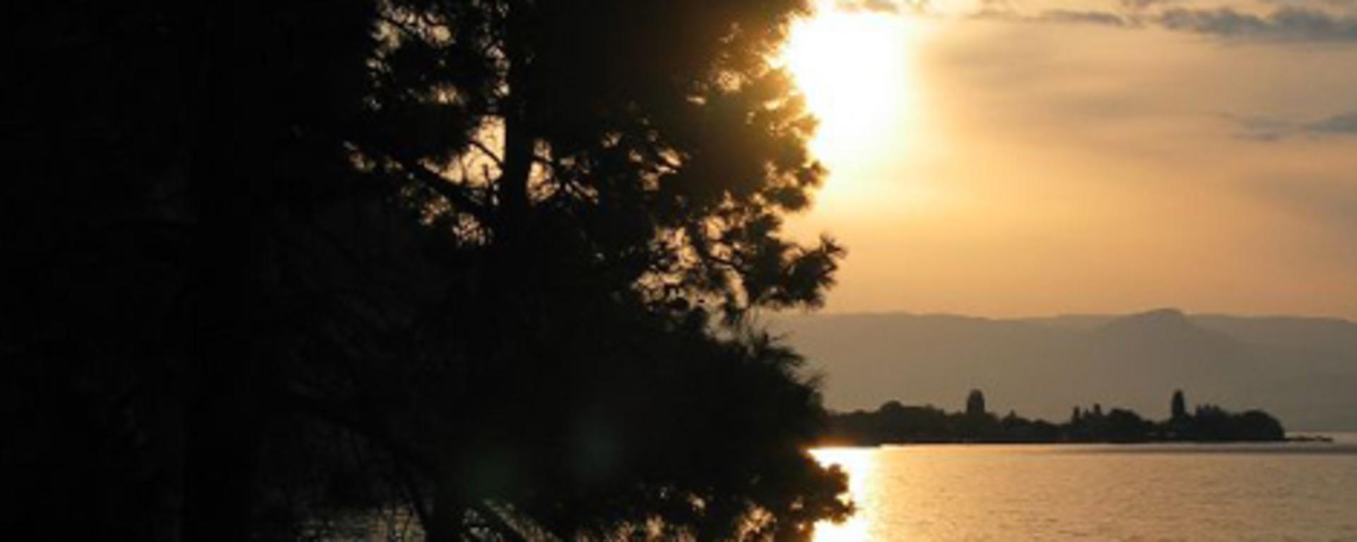 Seclusion-Bay-Resort.jpg