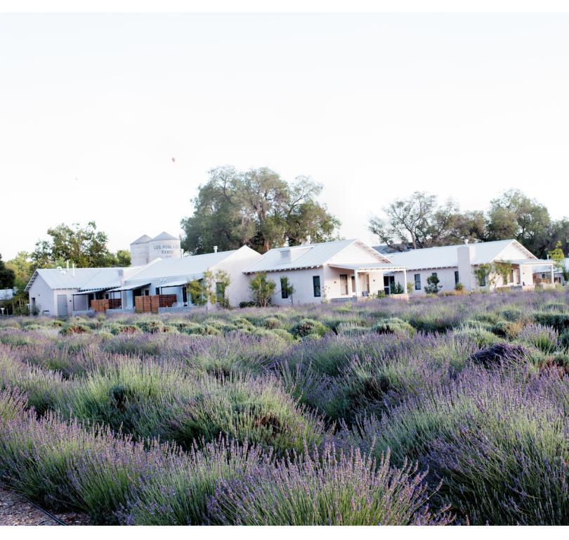 Los Poblanos lavender fields