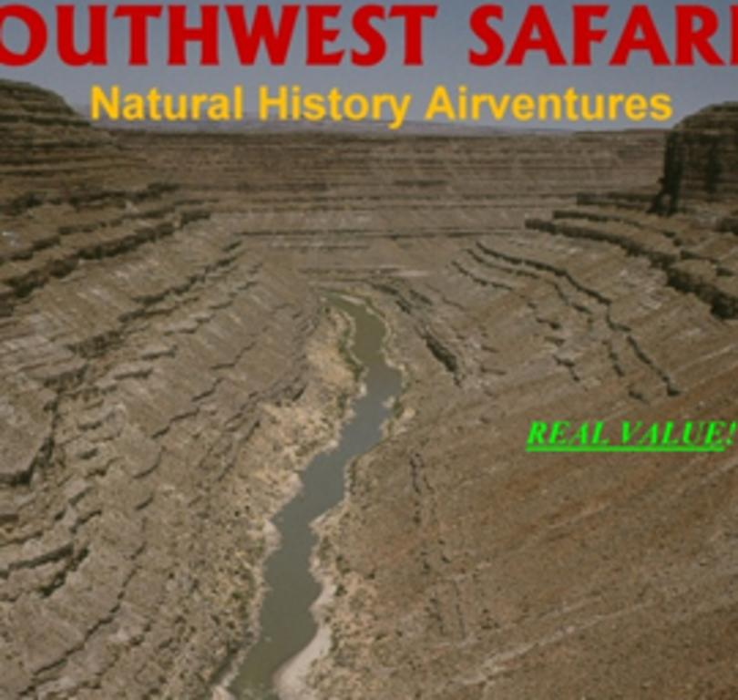 Southwest Wing Safaris