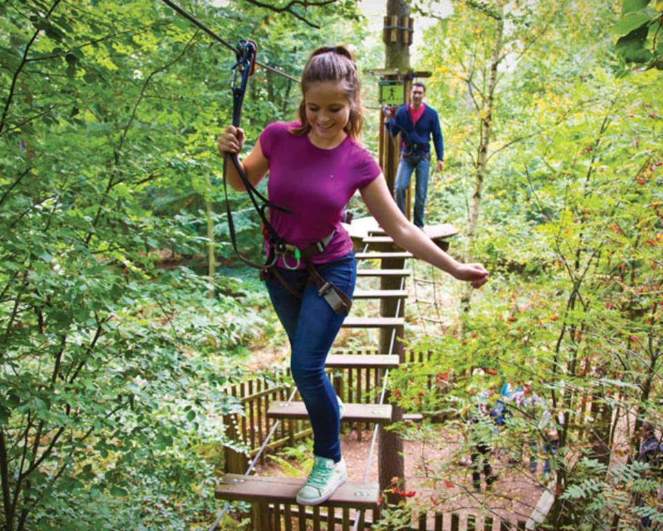 Go Ape! Lums Pond State Park