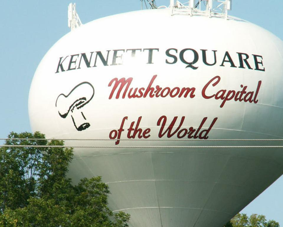 Mushroom Festival, Inc.