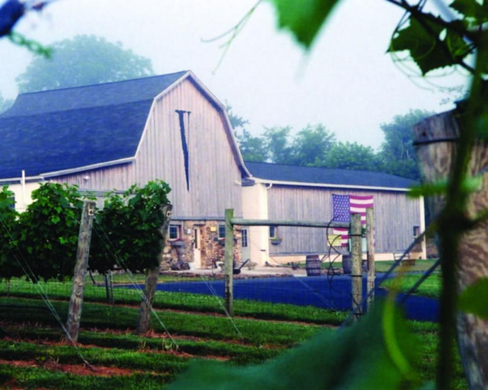 Va La Vineyards