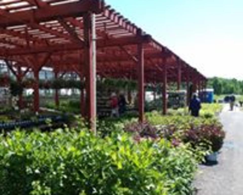 outdoor greenhouses