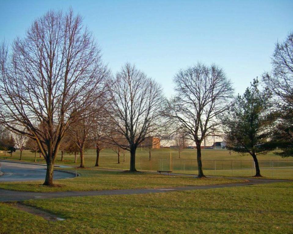 Greenbank Park