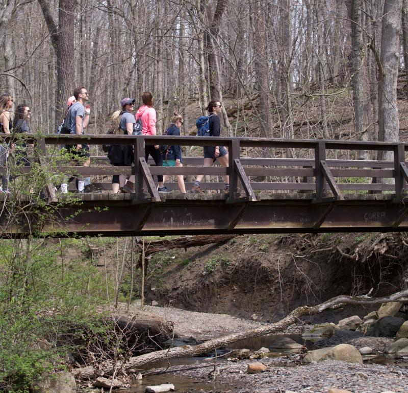 Hiking and Creek at Highbanks Metro Park