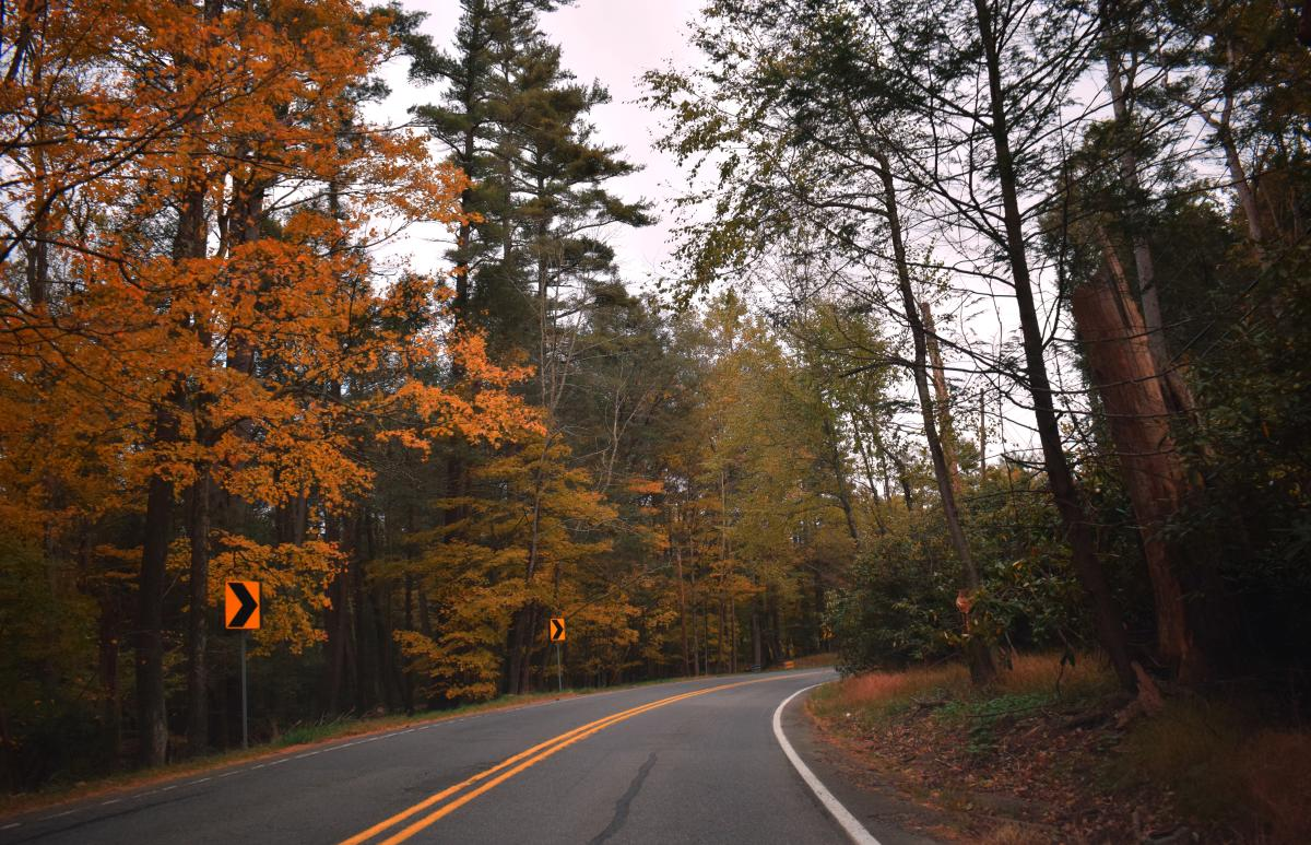Take a Scenic Drive and Explore the Fall Foliage in the Pocono Mountains