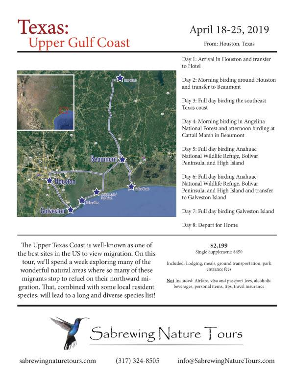 Texas Upper Coast Sebrewing Birding Tour Flyer
