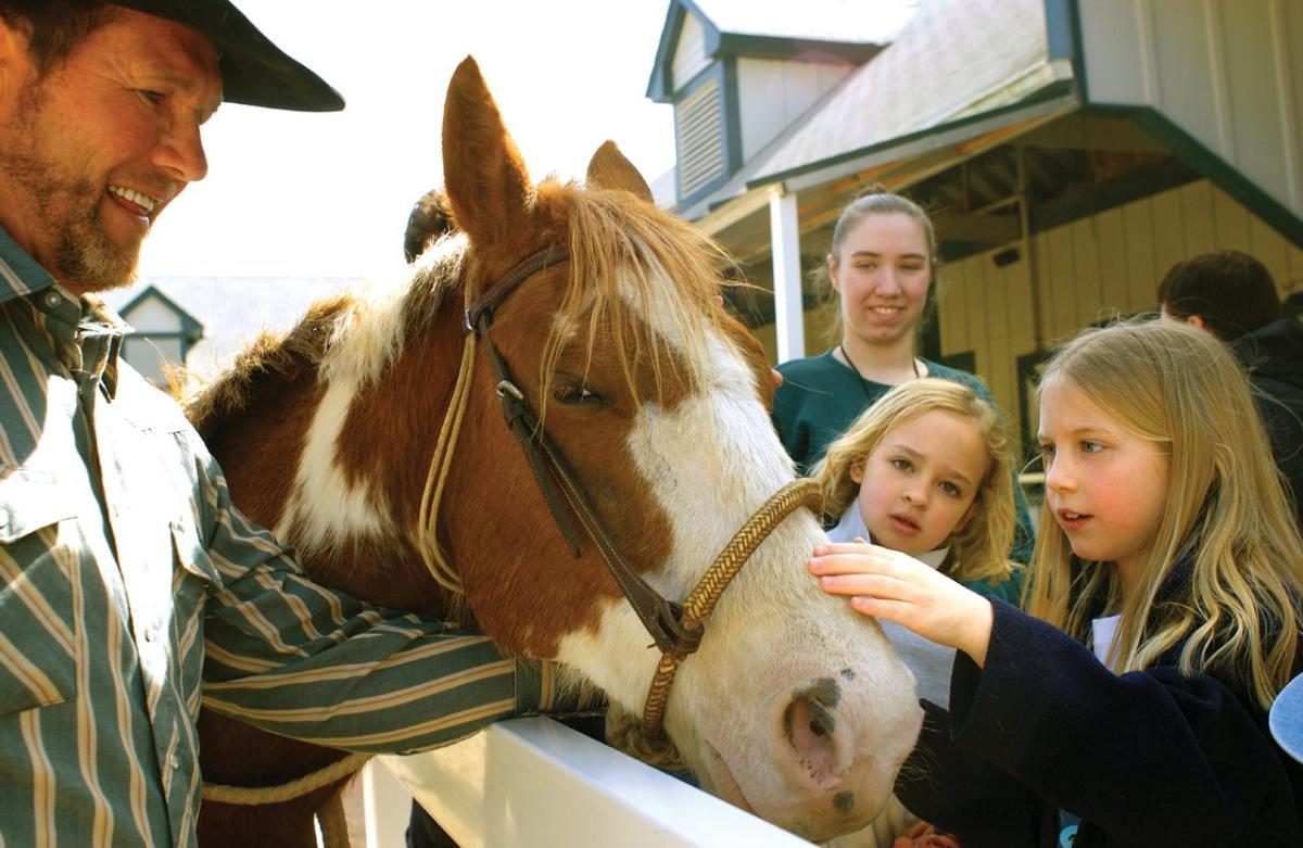 kids kentucky horse park