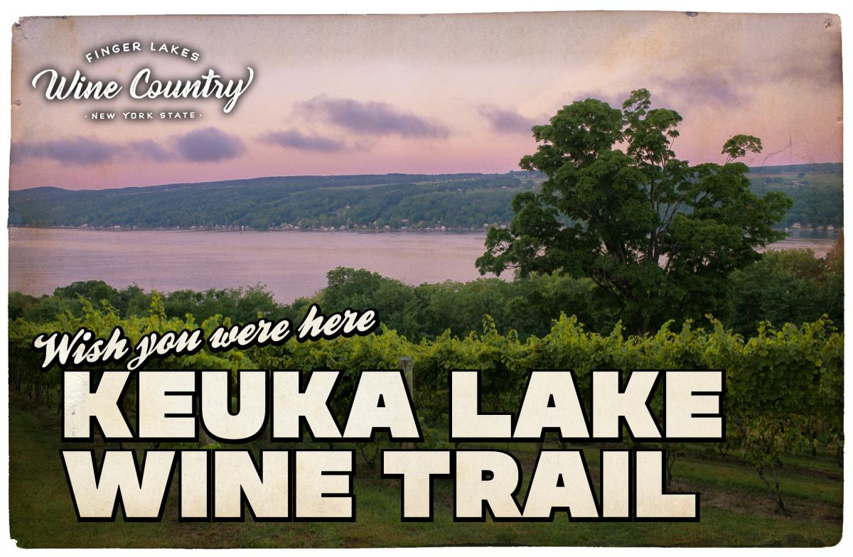 Keuka Lake Wine Trail Postcard