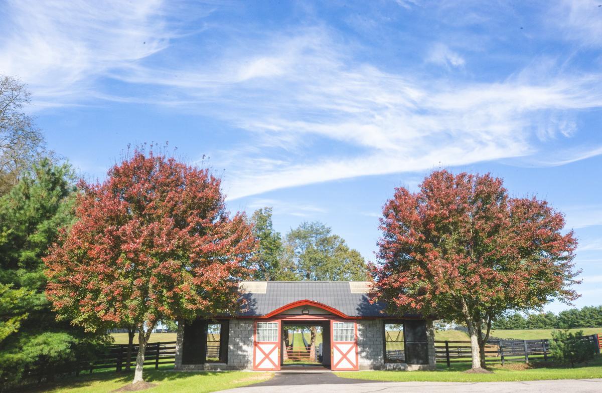 Taylor-Made-Farm