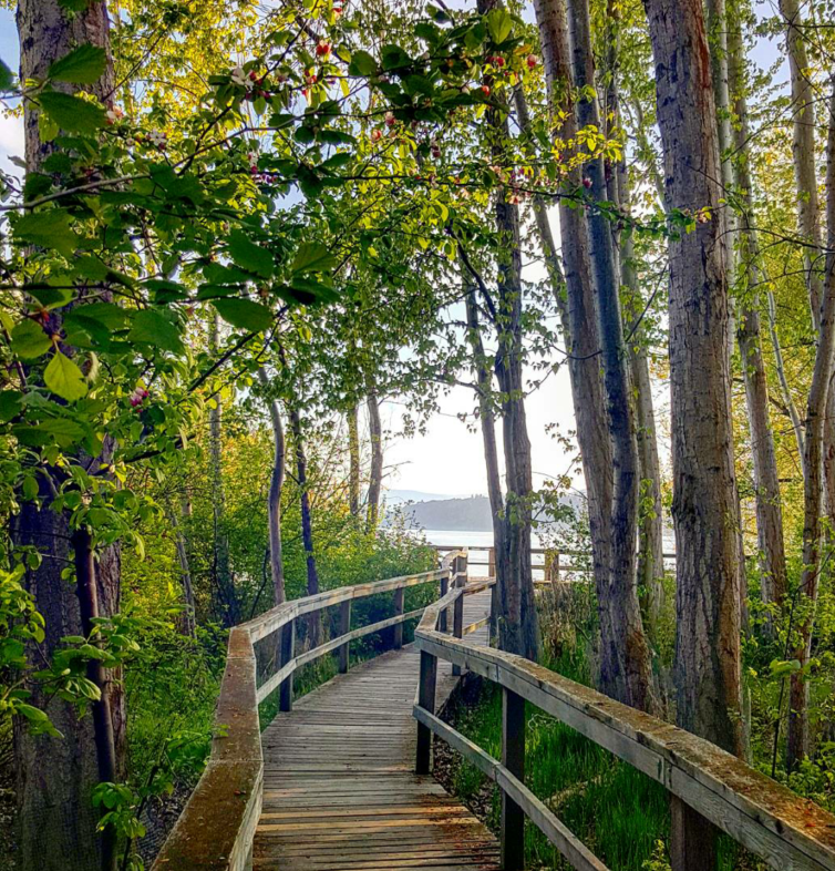 Kinsmen Park Boardwalk