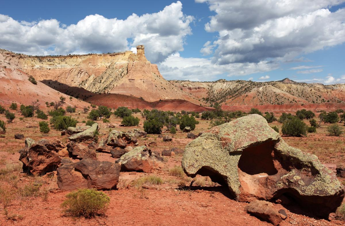 Ghost Ranch Vista