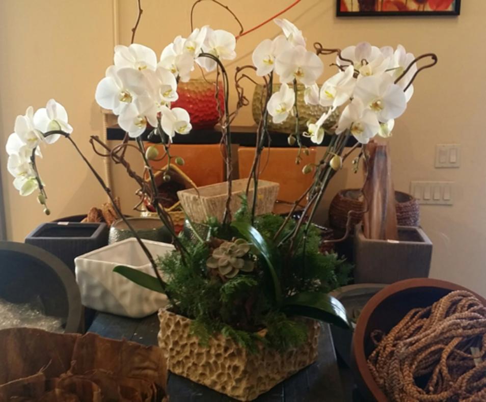 Flower Mart