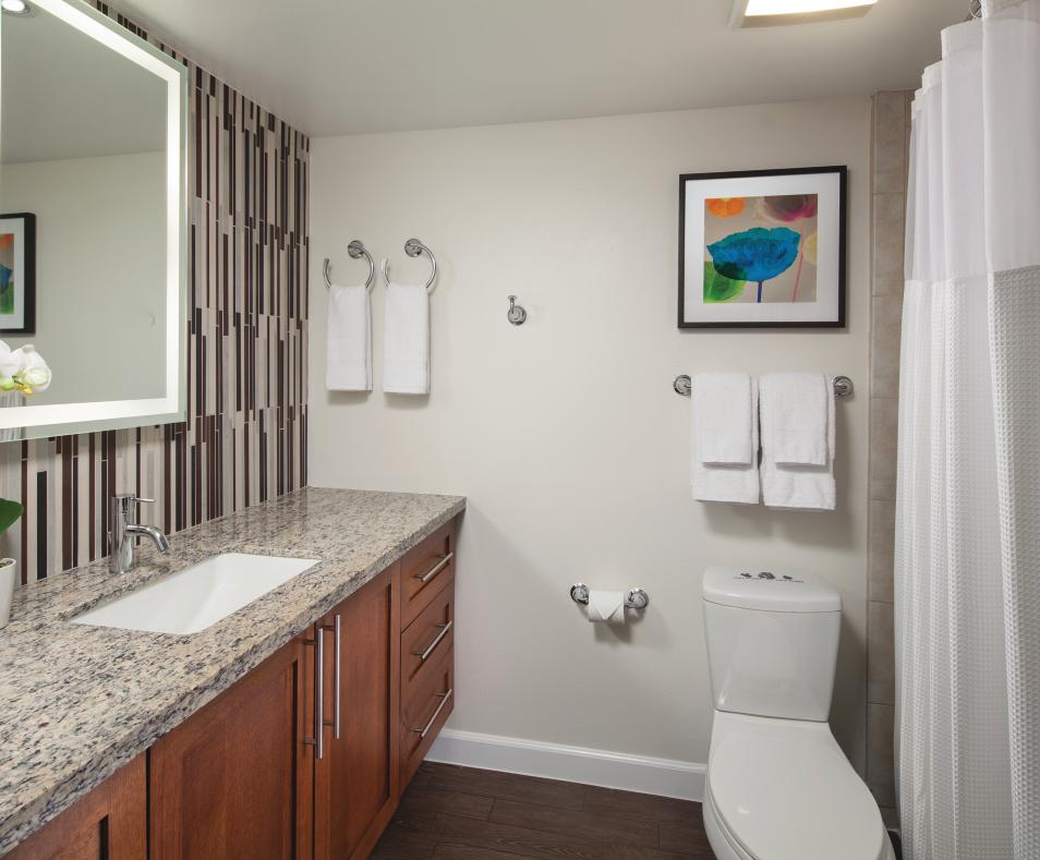 King Guest Room - Bathroom