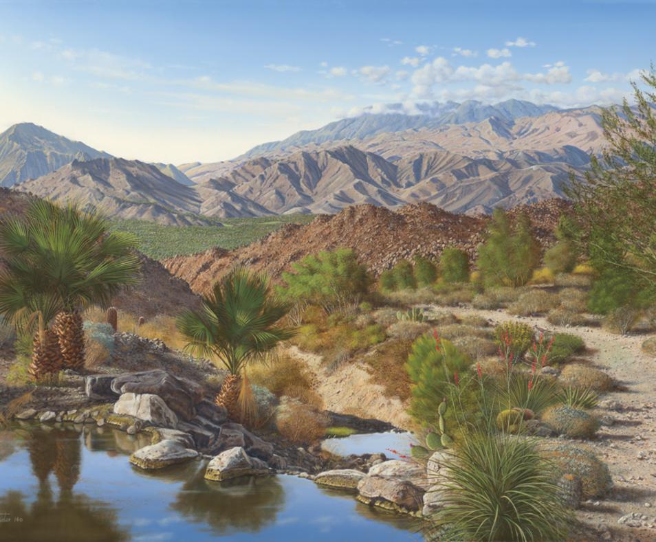 Baxter Palm Springs Landscape