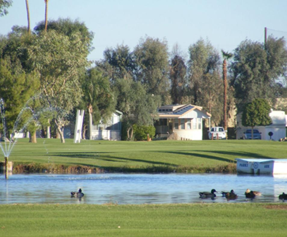 Desert Trails RV Park and Golf Course